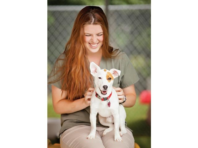 Pets in the Historic Triangle 3