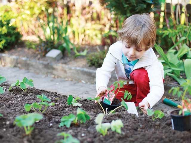 child_planting.jpg